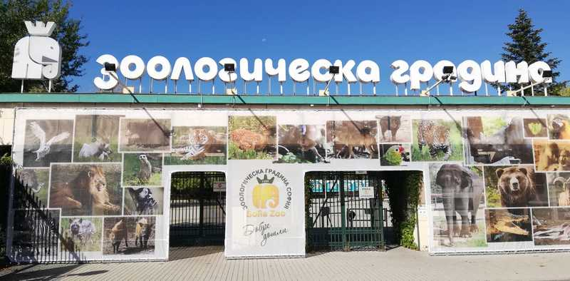 Зоологическа градина-София преминава към зимно работно време