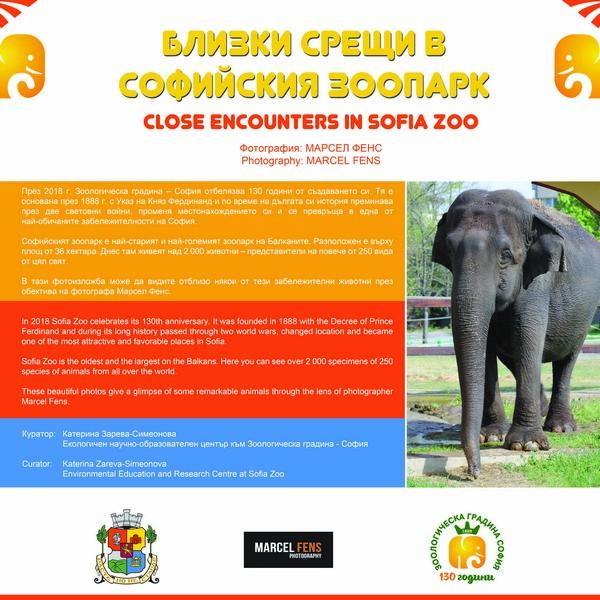 """Фотоизложба """"Близки срещи в Софийския Зоопарк"""" в Галерия на открито в Градската градина в София"""