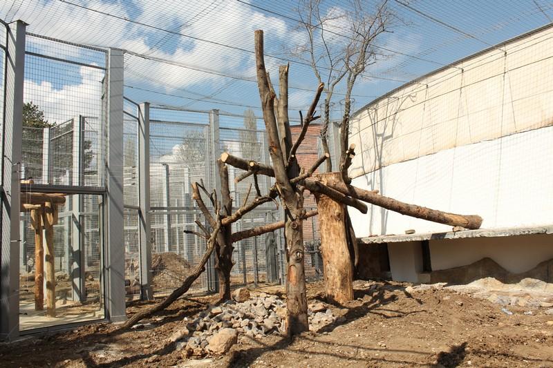Строителните дейности в Столичния зоопарк вървят по план