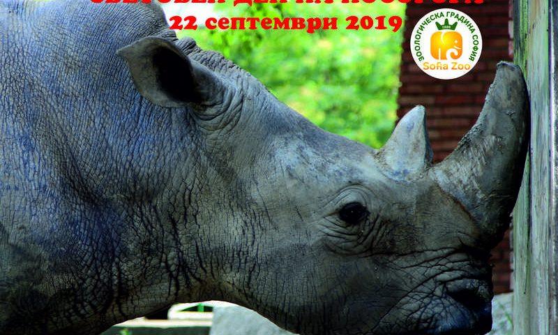 Световен ден на носорога 2019